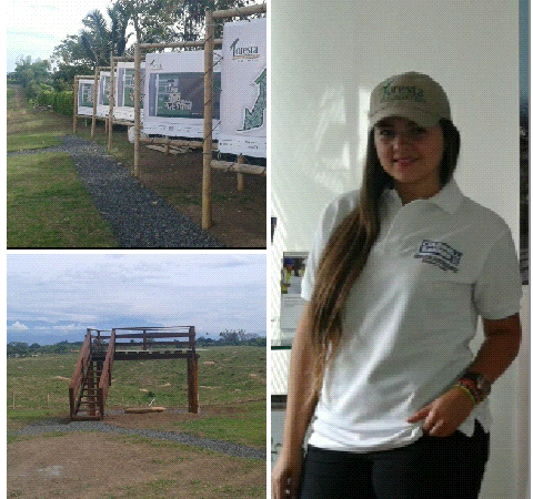 LOTE FORESTA
